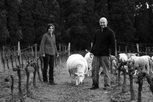 moutons nb web
